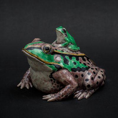 Green Frog by Kensuke Fujiyoshi