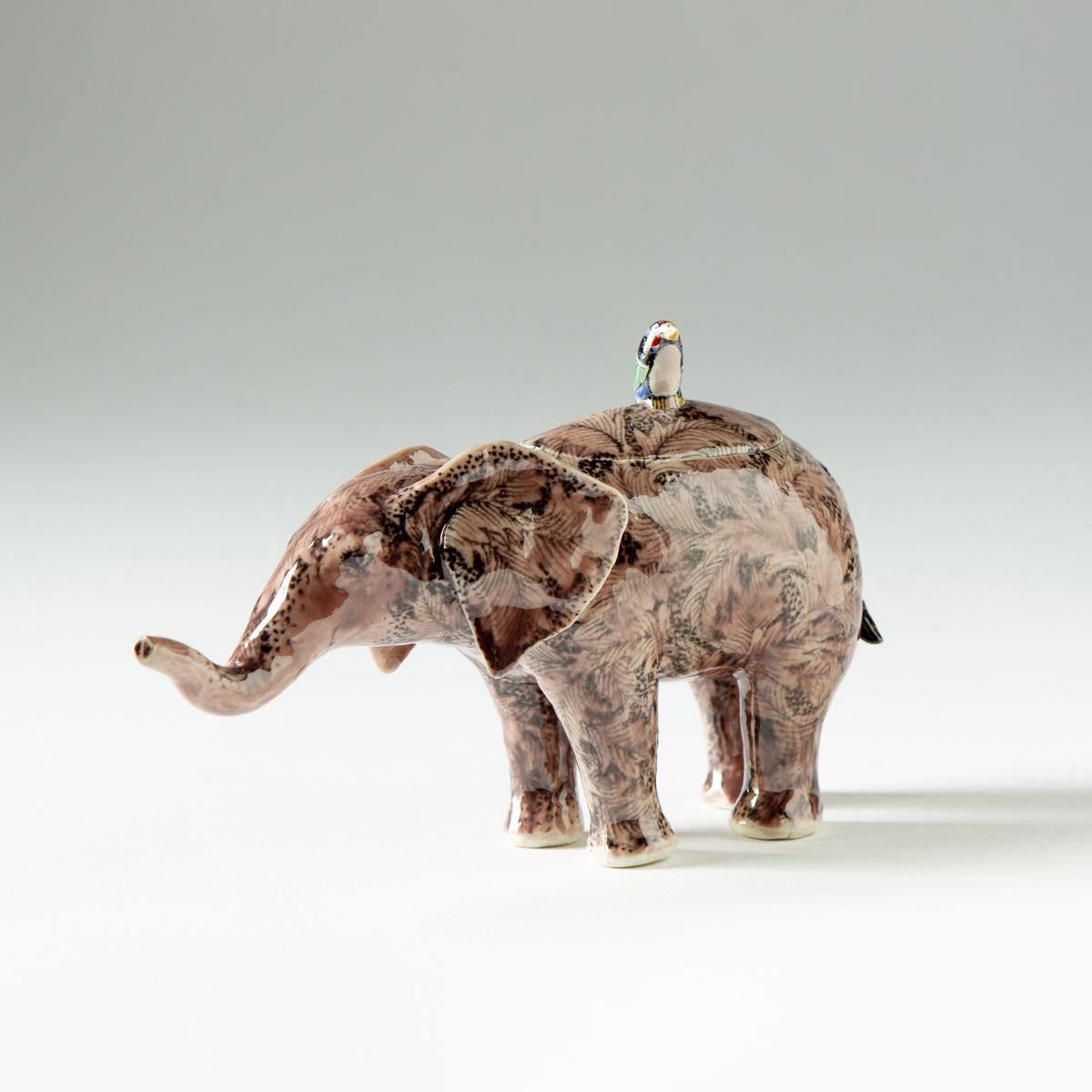 Elephant calf, Kensuke Fujiyoshi